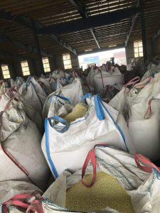 Iran Sulphur suppliers